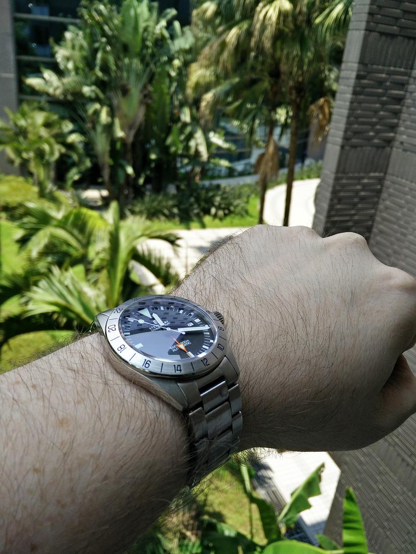 Votre montre du jour - Page 30 696849SteinTaip