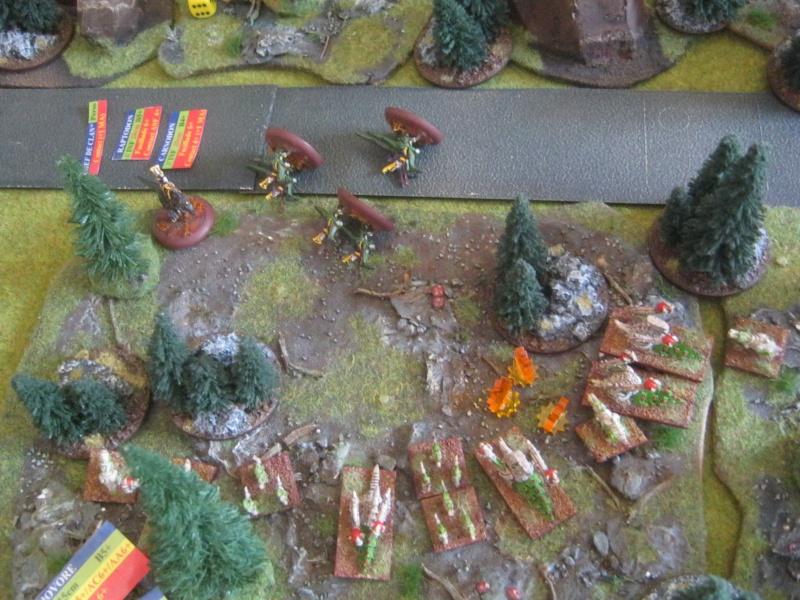 Assaut sur Zebra (campagne narrative) - Page 2 703840IMG0401