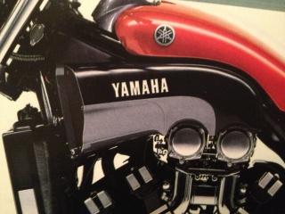 Références peinture pour 1200 Vmax de 1988? 708371IMG4820
