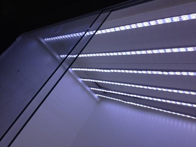 Fabrication terrarium 711675IMG2039Copier