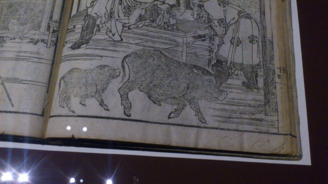 [Expo Report] Exposition Hokusai 712090DSC0075
