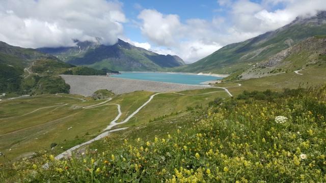 LC8 Rally western Alps - Stella alpina - Alps Tour 2016  714073selectionalpesTour