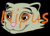 Nipus