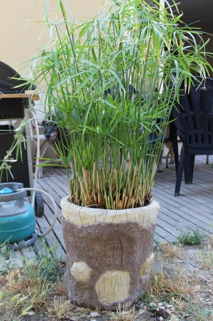 Jardinière en Rocaillage  722729IMG3060bis