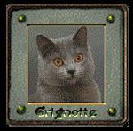 Suggestion pour avatar 723372grignotte