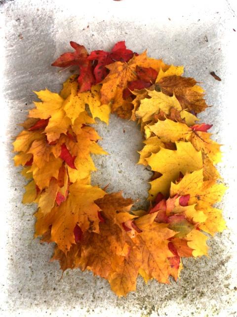 l'automne arrive... - Page 6 725039tu1picom1415721184