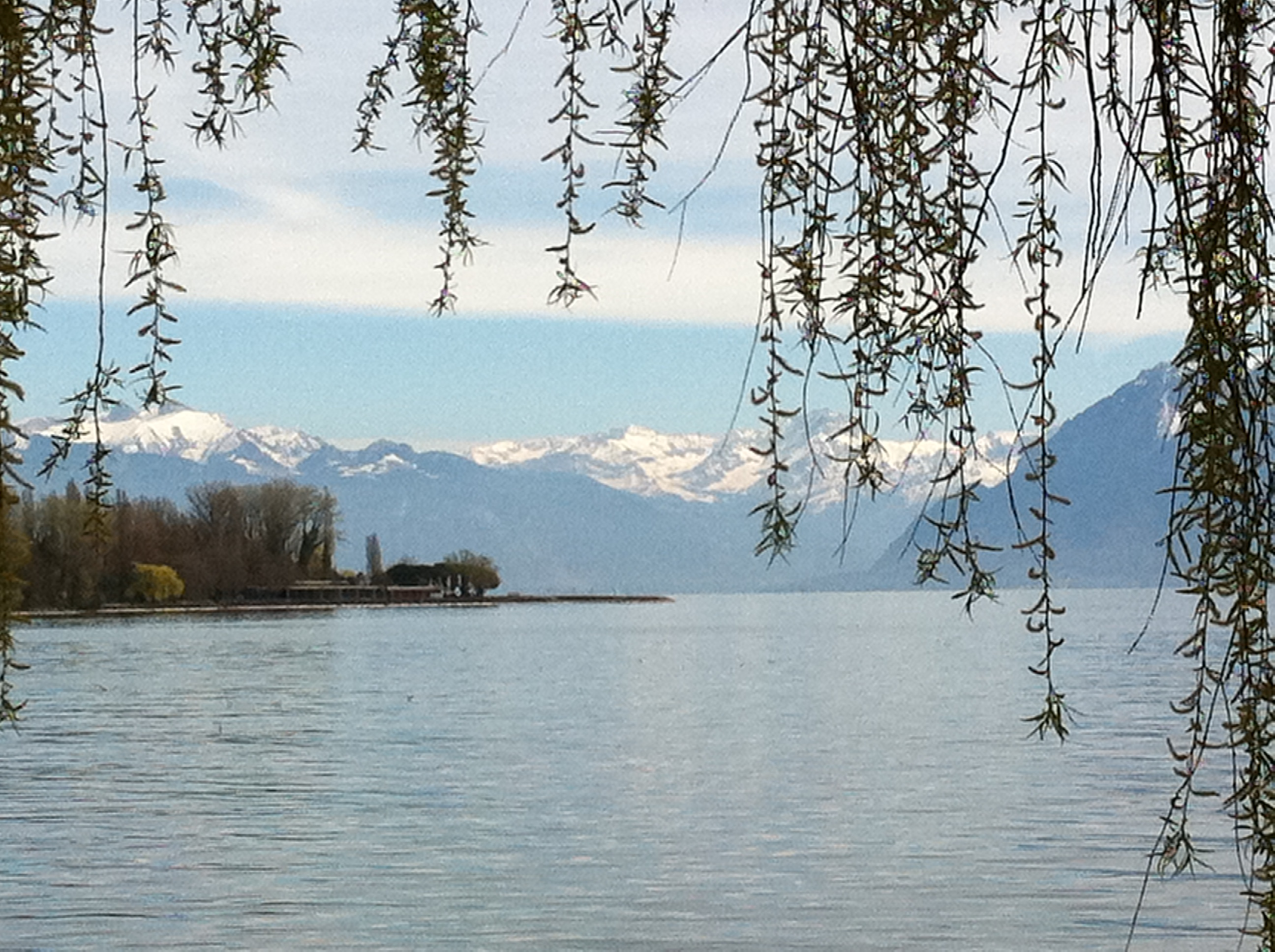 Un petit tour en Suisse? - Page 2 728172IMG0142