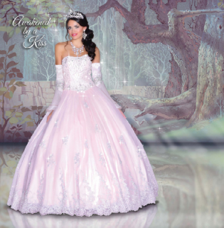 (Fashion) The Disney Forever Enchanted Collection & The Disney Royal Ball Collection 72944472p8