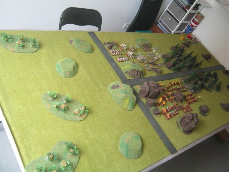 Assaut sur Zebra (campagne narrative) - Page 2 730053IMG0382