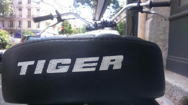 Le TigggggGGRREE TR7 Trackmaster 732200DSC0275