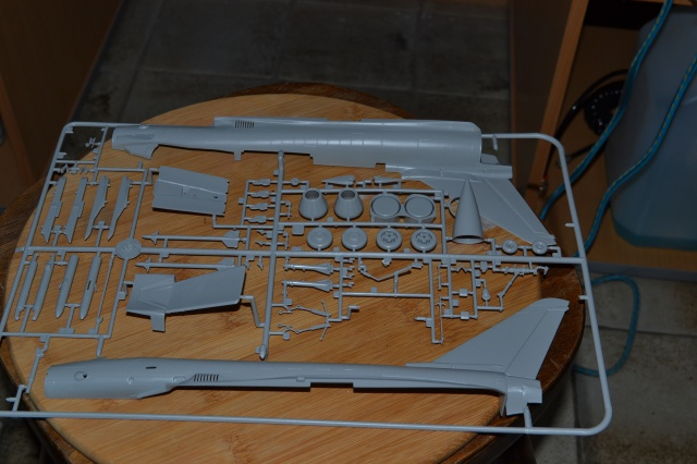 """EF - 2000 """"TYPHOON"""" Single Seater . ITALERI  Echelle 1/48 733051DSC0001"""