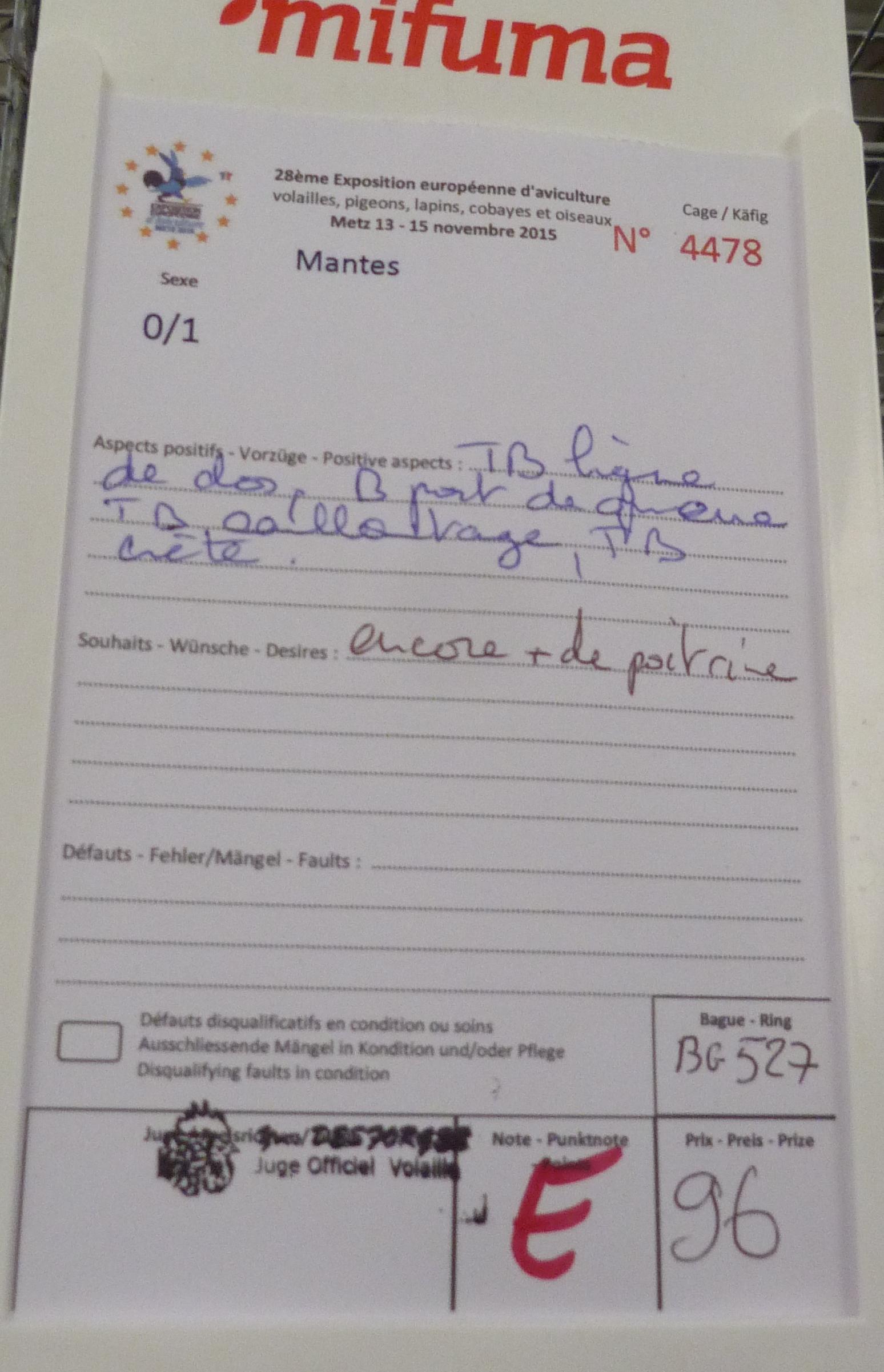 Expo de Metz, mes coups de cœur en GR 738296P1170271