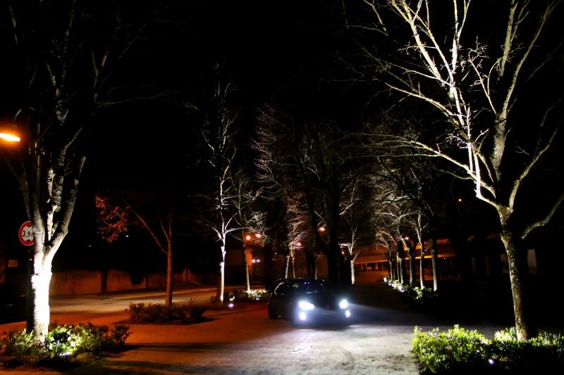Golf 6 Gtd black - 2011 - 220 hp - Attente Neuspeed - question personnalisation insigne - Page 39 739371IMG9806bis