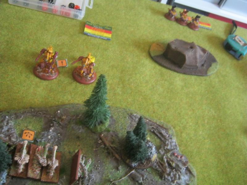 Assaut sur Zebra (campagne narrative) - Page 2 742303IMG0402