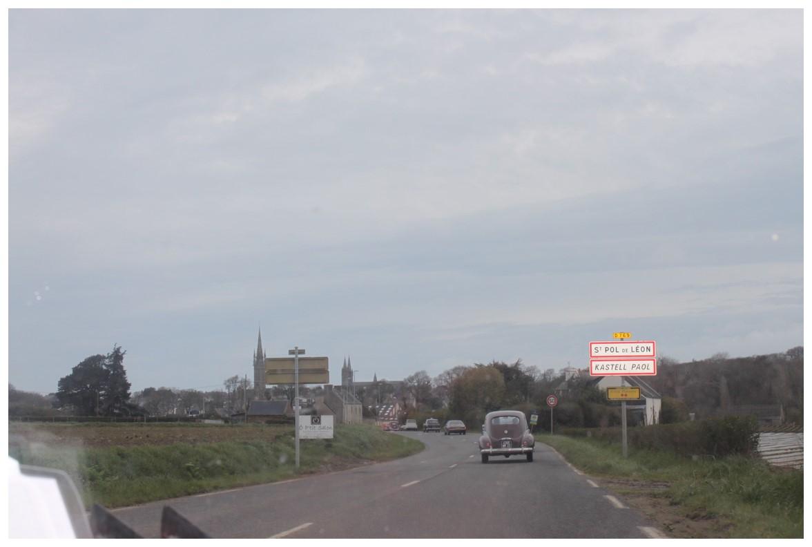 LA SORTIE des JONQUILLES du CALANDRE & TORPEDO 2016 743053IMG5869Copier