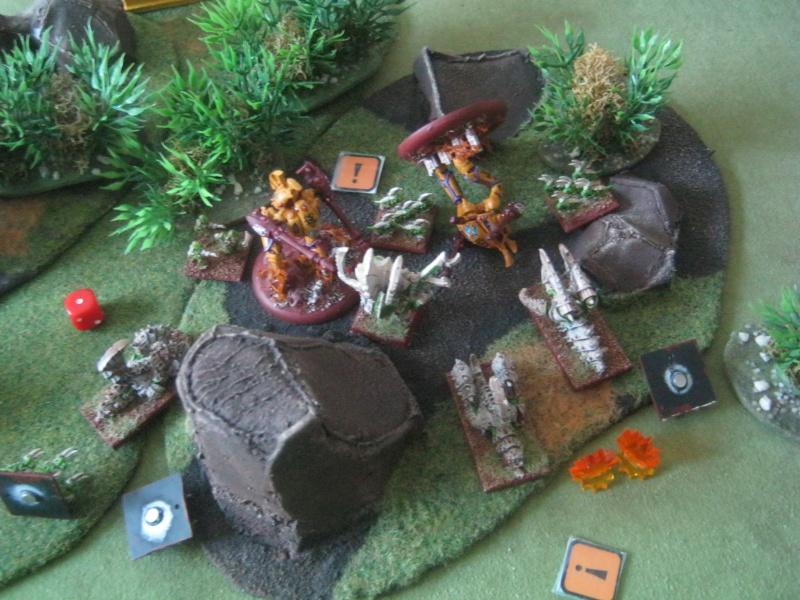 Assaut sur Zebra (campagne narrative) - Page 2 744314IMG0217