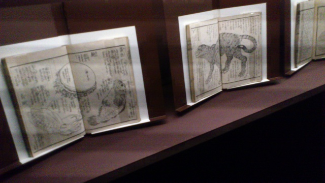 [Expo Report] Exposition Hokusai 744957DSC0093