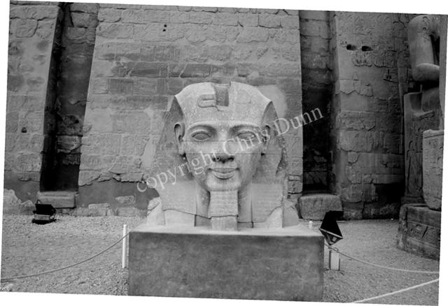 """La Révélation des Pyramides""  - Page 9 745952DunnRamsesJawline"