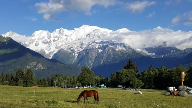 LC8 Rally western Alps - Stella alpina - Alps Tour 2016  747401selectionalpesTour16