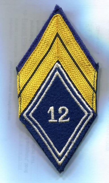 Deux soutaches à l'insigne régimentaire du 1er RCP 750976TISSU5001