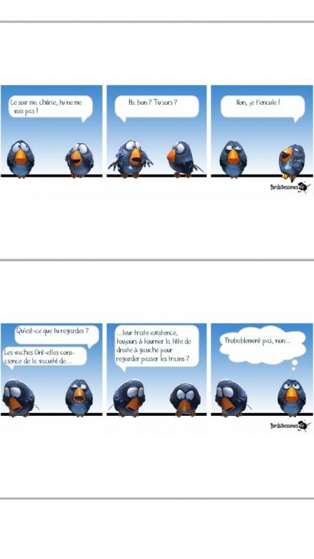 petite blagounette... - Page 33 753638image208
