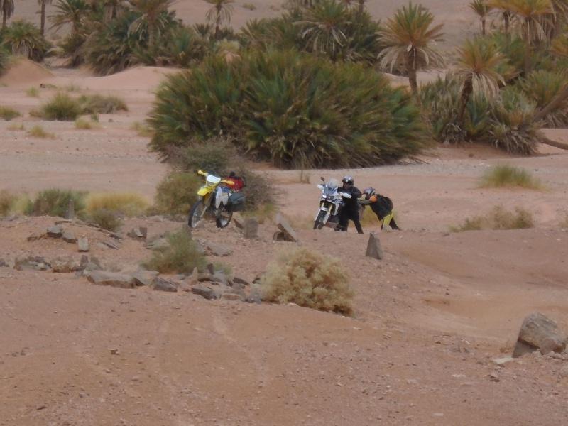 Maroc 2016 de Franck, Speedy et Maxou 756123DSC00493