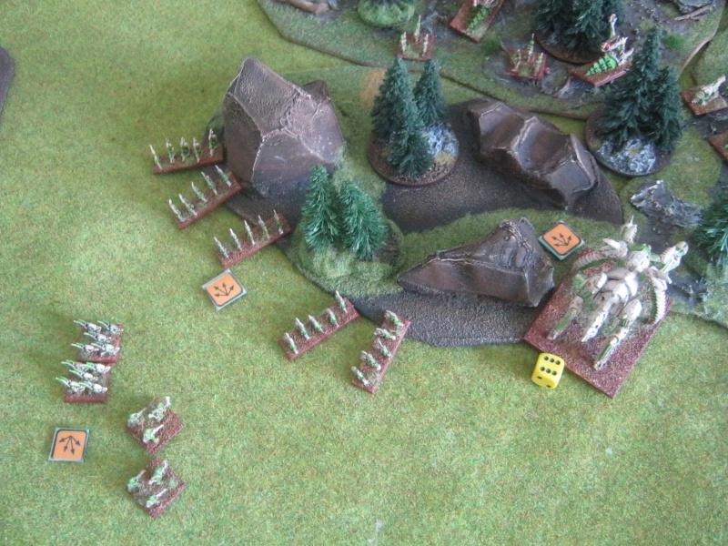 Assaut sur Zebra (campagne narrative) - Page 2 758548IMG0407