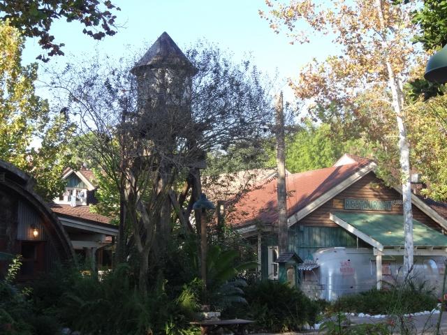 First Visit WDW/Miami/Key West halloween 2013 - Page 5 765756DSC02410