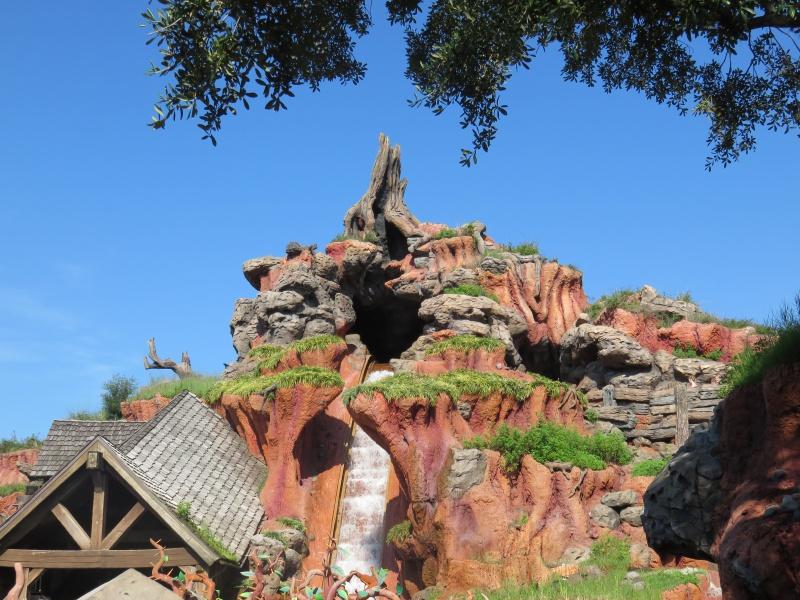 Walt Disney World + Universal Studios + Sea World + Busch Gardens Summer 2014 - Page 4 768850IMG0793