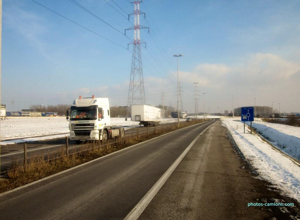 Wijngaard Natie Transport (Anvers) 773007photoscamions25I2013224Copier