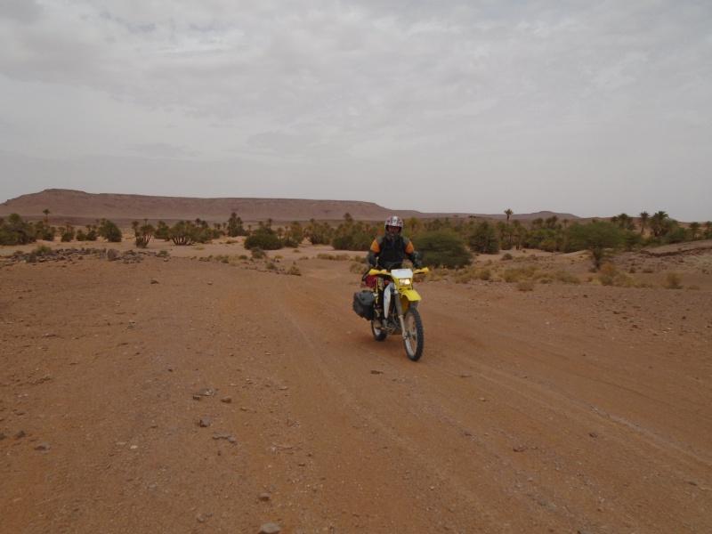 Maroc 2016 de Franck, Speedy et Maxou 774217DSC00496