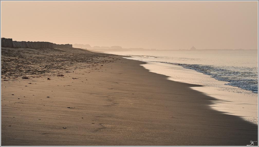 Morbihan: Suscinio, la plage 779498LR6P3130007