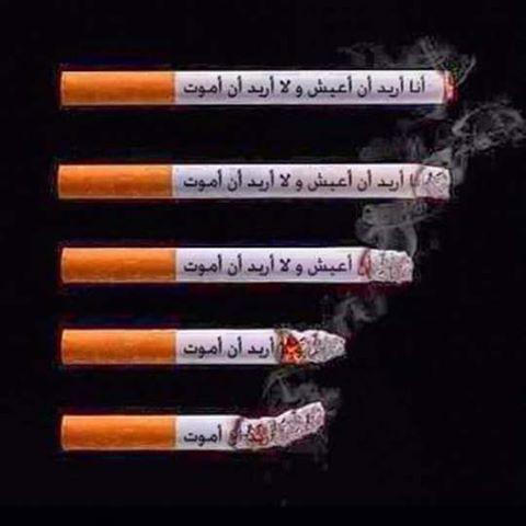 منتدى الاقلاع عن التدخين    forum arrêter de fumer 78280815781583158216101606