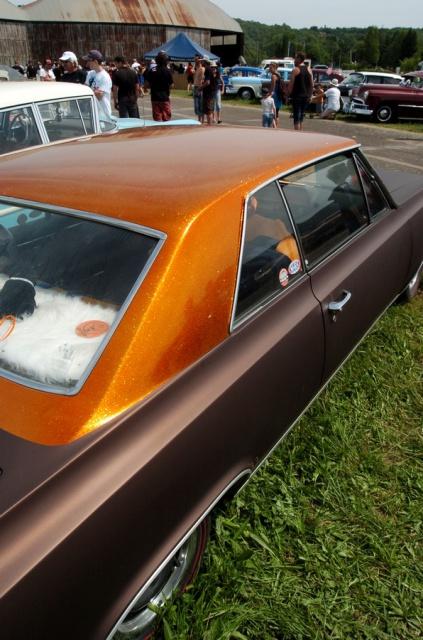 8 Ball Day Teddy Cruisers 2012 784798DSC666301