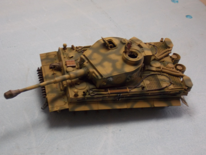 TIGRE S33  avant la bataille de Koursk juillet 43 (Dragon 1/35 dio DIODUMP) - Page 6 791204DSCN4670