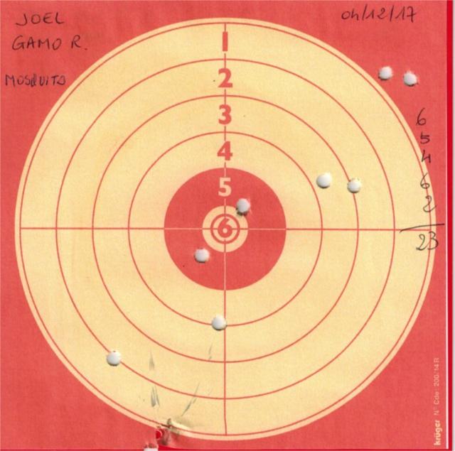 Tests plombs avec carabine Gamo Replay 797056GAMOREPLAYUMAREXMOSQUITO
