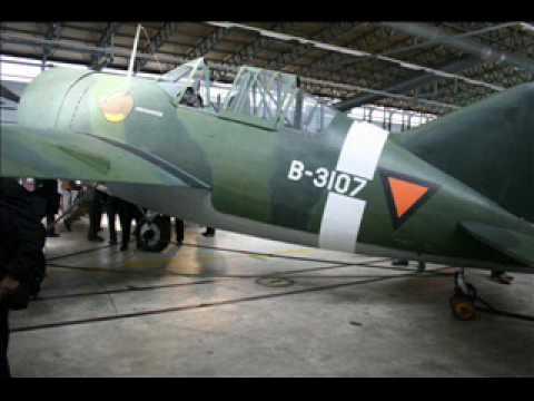 Brewster B-339B Buffalo 1/48 Tamiya.....Terminé! - Page 2 799223Dutch1