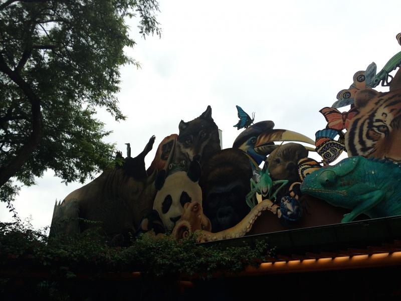 Walt Disney World + Universal Studios + Sea World + Busch Gardens Summer 2014 - Page 4 799886IMG2779