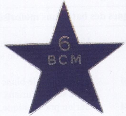 6e Bataillon de chasseurs mitrailleurs 800898002