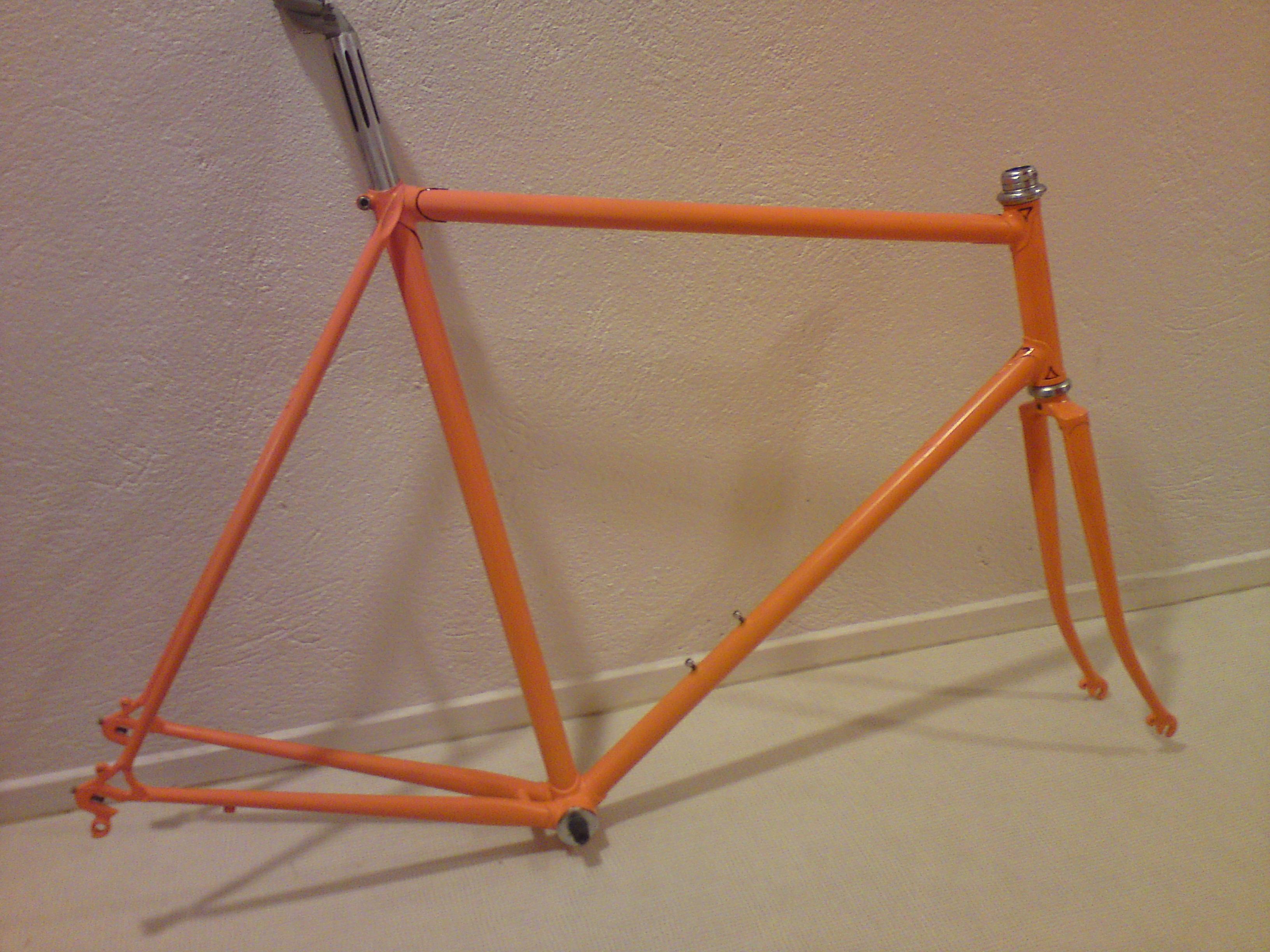 Eddy Merckx replica 801505DSC03057