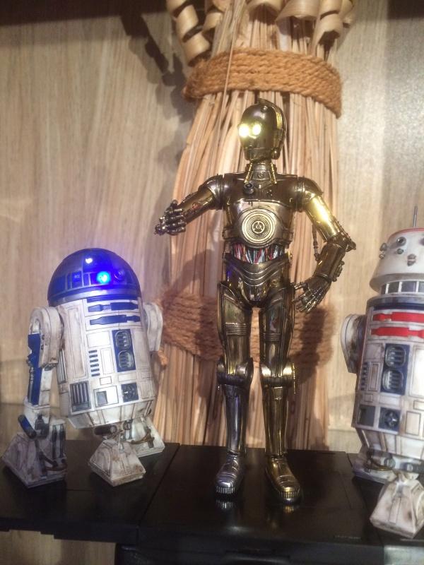 R2-D2 et C3-PO (et R5-D4) 802996IMG0251