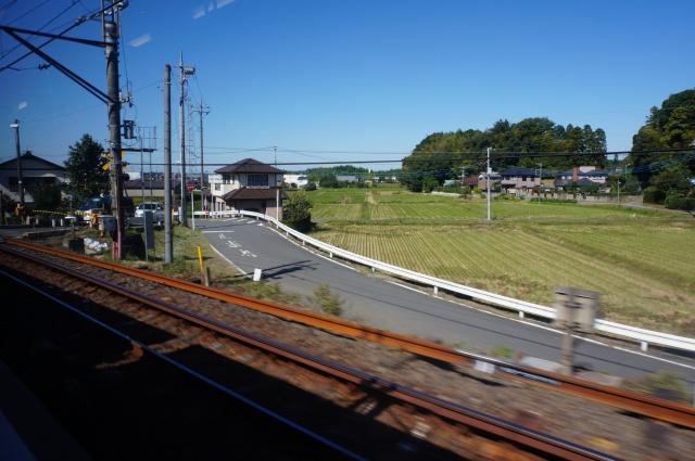 gaijin - Gaijin in Japan: Tokyo - Kyoto - Osaka [Terminé] 803102DSC01007
