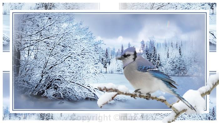 paysage hivernal  803216Sanstitre4