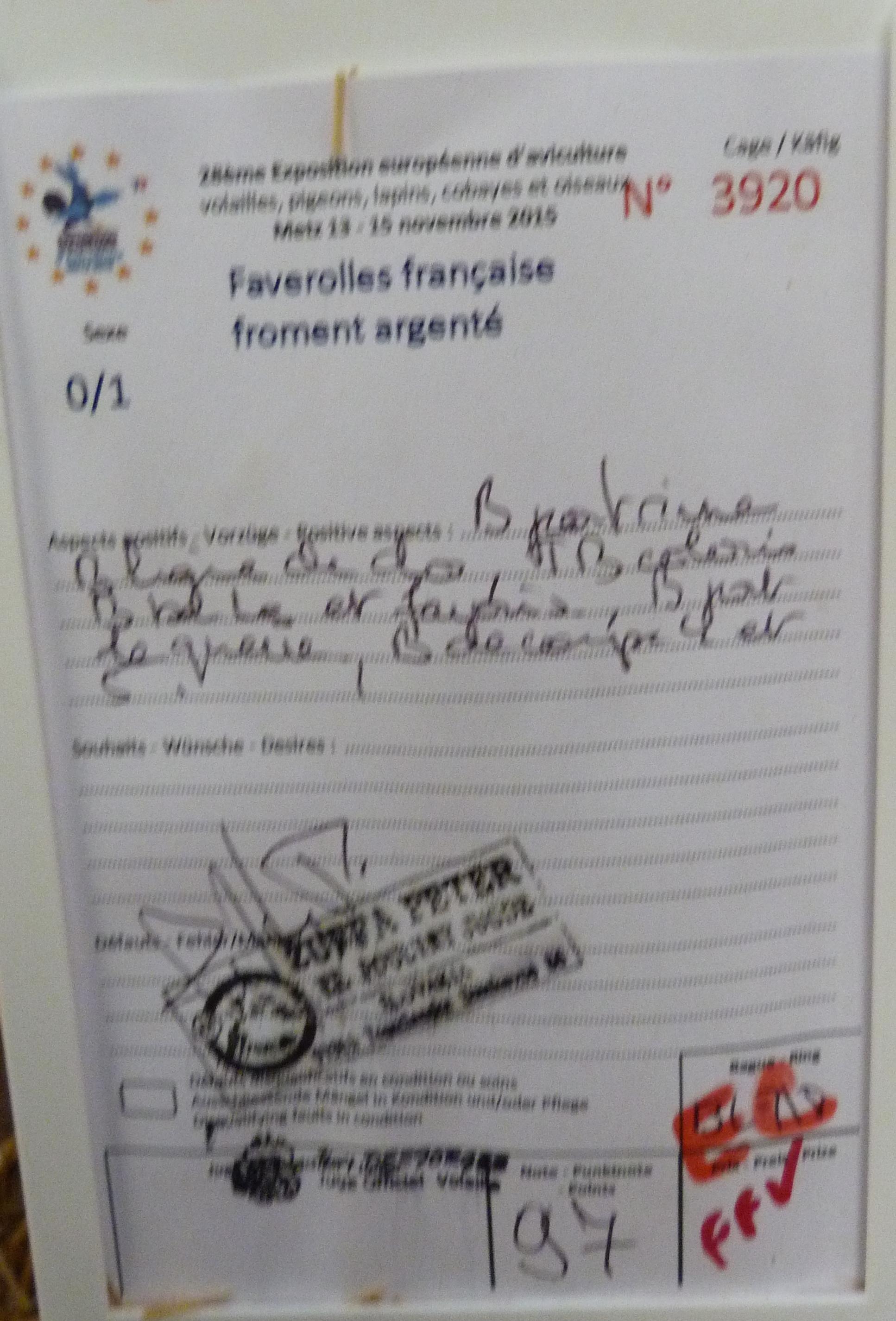 Expo de Metz, mes coups de cœur en GR 803309P1170260