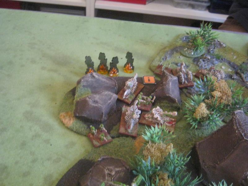 Assaut sur Zebra (campagne narrative) - Page 2 803682IMG0184