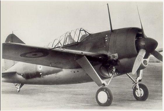 Brewster B-339B Buffalo 1/48 Tamiya.....Terminé! 805992BuffaloBelgiumnotinflight1