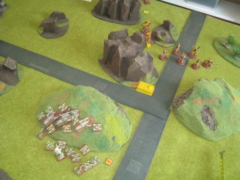 Assaut sur Zebra (campagne narrative) - Page 2 811100IMG0397