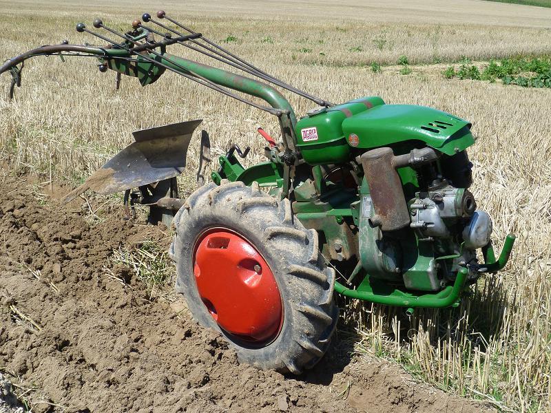 agria - Piece AGRIA 8127352800aulabdemitour