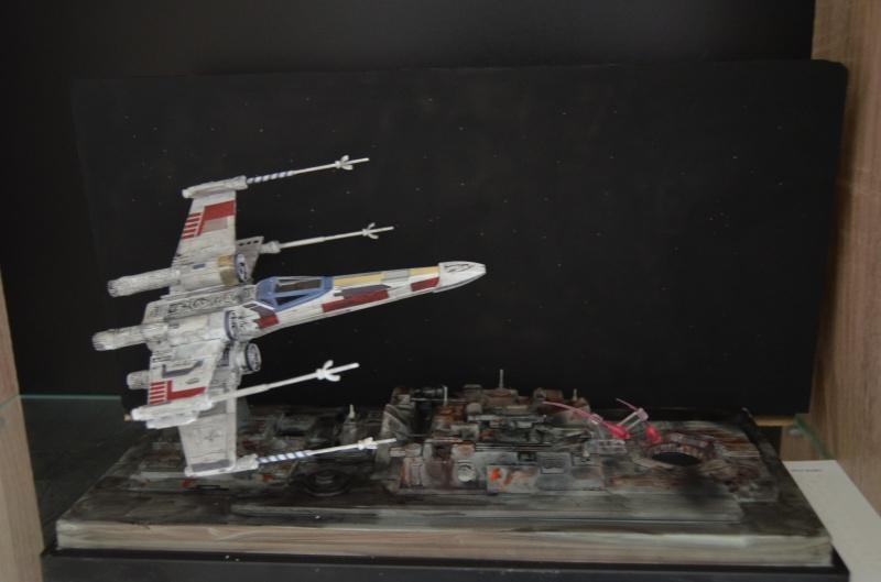 faite décollé la chasse 817261DSC0018