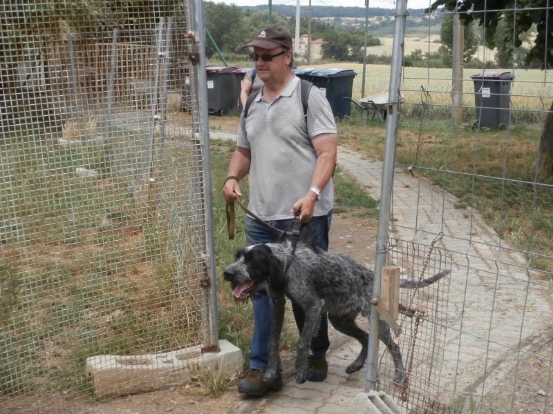 Rando' chien, seconde édition! 822566P6142774